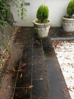 garten terrassen reinigung vorher