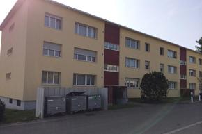 Komplette Wohnungsreinigung, Grüt ZH