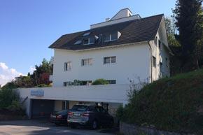 Dachrinnen-, Terrassen- und Glasreinigung, Wädenswil ZH