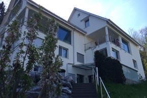 Fenster-, Fassaden- und Vordachreinigung, Wädenswil ZH