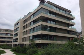 Fenster- und Balkonglasreinigung, Überbauung, Altendorf SZ