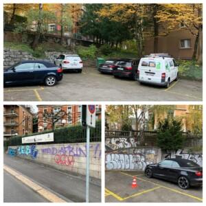 graffitientfernung osmo clean
