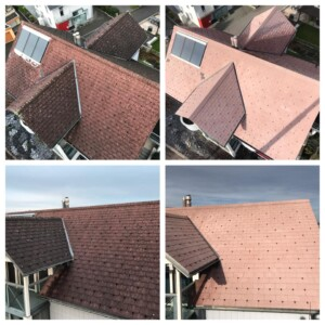 was kostet eine dachreinigung