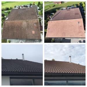 Wie kann man Moos vom Dach entfernen