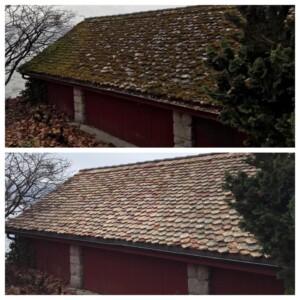 Wie schädlich ist Moos auf dem Dach