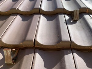 moos vom dach entfernen