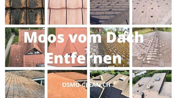 moos vom dach entfernen osmo clean