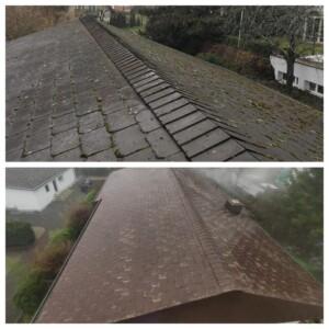 we grünspan auf dach entfernen