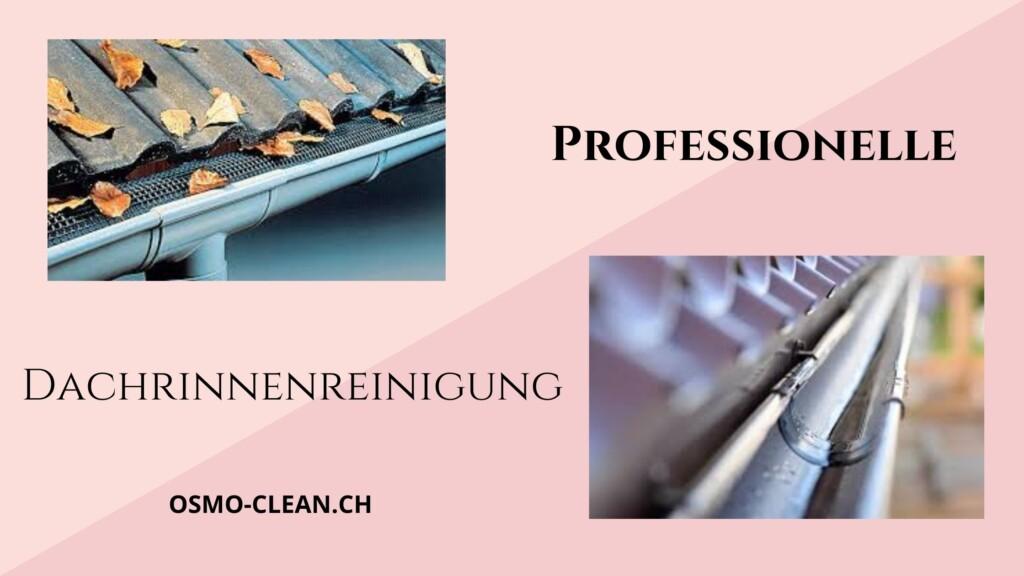 professionelle dachrinnenreinigung